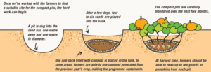 Yard Waste & Composting